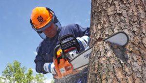 chainsaw-safety-hero